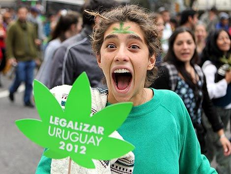 Uruguay - Status Report; Petition in support of the controlled legalization of Marijuana in Uruguay