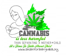 Idaho - News, Action Alert: Police Raid Home of Medicinal Marijuana Activist, Throw Her Kids in Foster Care