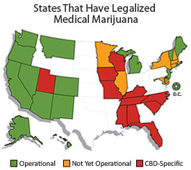 MERCY In America A Guide To Medical Cannabis Resources In The USA - Med pot us map